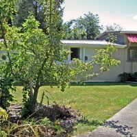 02-homestead-cattery-ashhurst-palmerston-north-5.jpg